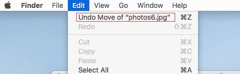 recover deleted files from mac with undo options